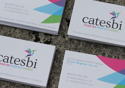 Catesbi - Branding and Logo Design