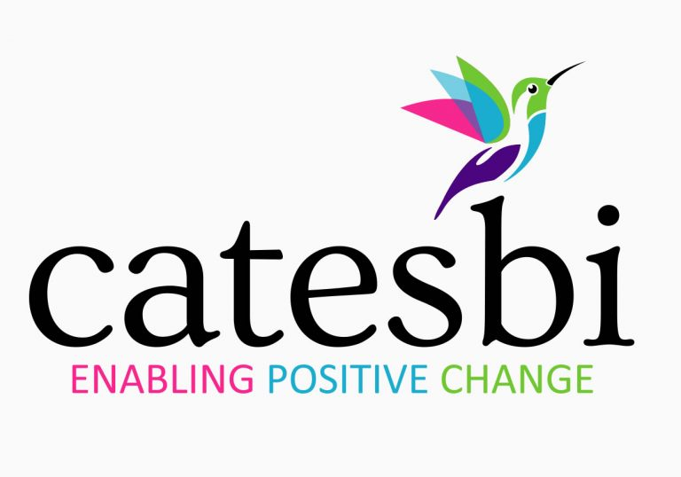 catsbi - Logo and Branding