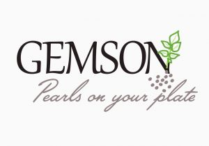 Gemson - Rebrand